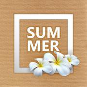 Illustration of Summer label with exotic frangipani flowers Stock Illustration