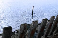 erosion protection pillars - stock photo