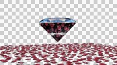 Diamond attracting rose petals, Alpha Channel Stock Footage