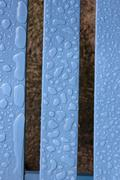 rain drop patterns on wood - stock photo