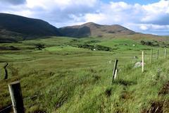 green fields of ireland - stock photo