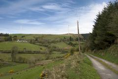 Country lane in the irish countryside Stock Photos