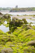 Ballybunion castle algae covered rocks view Stock Photos