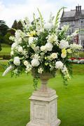Opulent bouquet of flowers Stock Photos
