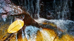 Closeup of Gentle Waterfall  with Sound Stock Footage