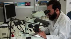 Men on microscope 2 - stock footage