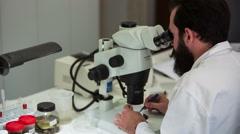 Men on microscope 5 - stock footage