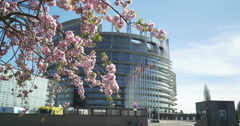All European Union flags in front of European Parliament Stock Footage