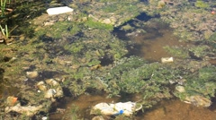 Polluted dirty water Stock Footage