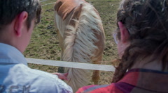 Witching the horse while eating Stock Footage