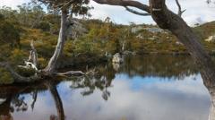 Wombat pool in autumn Stock Footage