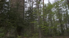 Old small tower in german forest Stock Footage