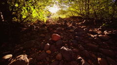 Walk on the rocky path in the woods towards the sun Stock Footage