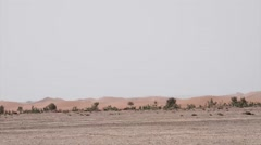 A caravan of camels and beduins in the distance Stock Footage