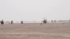 A mirage far away in the horizon - stock footage