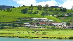 Gregory lake in Nuwara Eliya - Sri Lanka Stock Footage