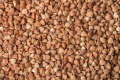 buckwheat groats background - stock photo