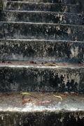 Concrete stairs slick and mossy Stock Photos