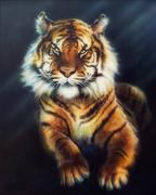 A beautiful oil painting on canvas of a mighty tiger looking up - stock illustration