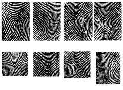 Fingerprint Crops  - Separate vector illustrations Stock Illustration