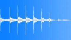 Stock Sound Effects of Exotic bird - New Zealand bird Tui, cackling chirp sound. Rainforest bird.