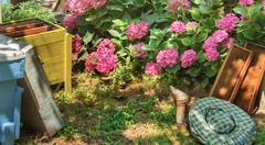 Beekeeping - stock photo