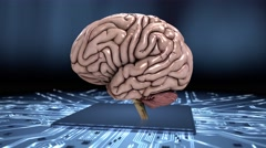 Simulating the human brain loop slow 4K Stock Footage