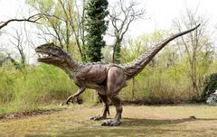 Profile of Saltriosaurus Dinosaur Model Outdoors Stock Photos