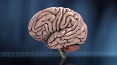 Analyzing the human brain slow loop blue 4K Stock Footage