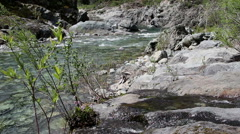 North Fork American River Creek Feeding In Foreground Stock Footage