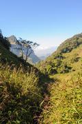 Beautiful hiking trails. - stock photo