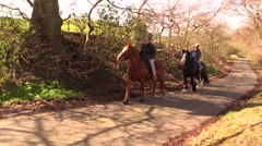 Walking on horseback in the woods Stock Footage