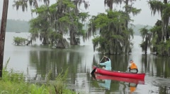 Couple paddling canoe out into swamp Stock Footage