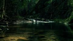 Exotic Jungle Stream and Swimming Hole in 4K (Timelapse) Stock Footage