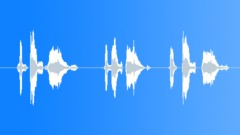 Stock Sound Effects of The best deals - Female Voiceover