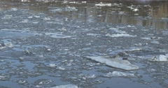 Close up of Ice flowing down a river during springtime melt. Stock Footage