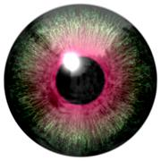 Detail of eye with green colored iris and black pupil Stock Illustration