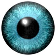 Detail of eye with light blue colored iris and black pupil - stock illustration