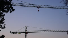 Two cranes and birdsong - stock footage