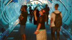 Aquarium in Mall - world's largest shopping mall in Dubai, United Arab Emirates Stock Footage