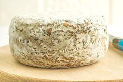 Tomette des Alpes, cheese of France - stock photo