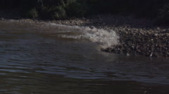 Waves in Slow Motion - Elbe river Dresden Stock Footage