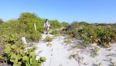 Man hiking toward camera through hot sandy subtropical environment Stock Footage