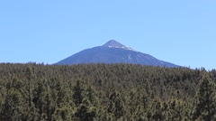 Mountain landscape - Pico del Teide -Tenerife, Canary Island, forest Stock Footage