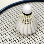 Shuttlecock on racket Stock Photos