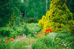 Garden Landscaping Design. Flower Bed, Green Trees And Bushes In Garden - stock photo