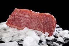 Big tuna steak on ice. Stock Photos