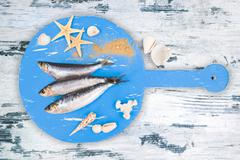 Fresh anchovy fish. Stock Photos