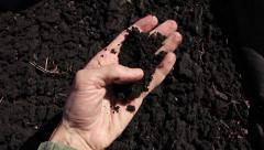 Human hand takes a sample of the black fertile soil Stock Footage