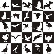 Black and white background with aquatic birds - stock illustration